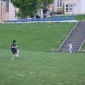 ワーホリで韓国人の友達と野球